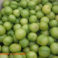 алыча для зеленого ткемали