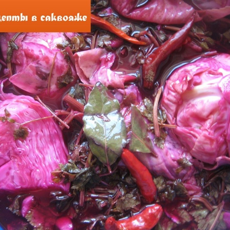 рецепт соленой капусты по-грузински