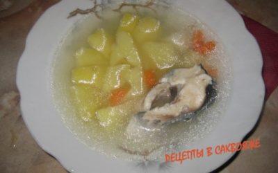 рыбный суп - уха
